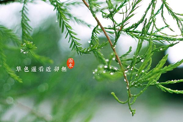 """海丽气象吧丨19日迎来""""雨水"""",山东部分地区有零星小雨雪"""