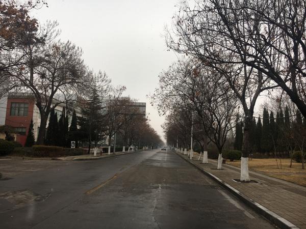 初五迎瑞雪  G20青银高速临淄、淄博站双向入口临时关闭