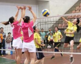 2018年山东省妇女气排球比赛将于3月8日开赛