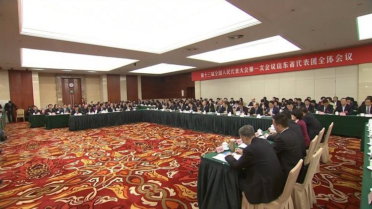 王文涛在山东代表团审议政府工作报告