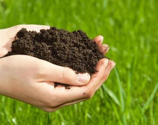 潍坊发现大面积富硒土壤 将对产业布局产生深远影响