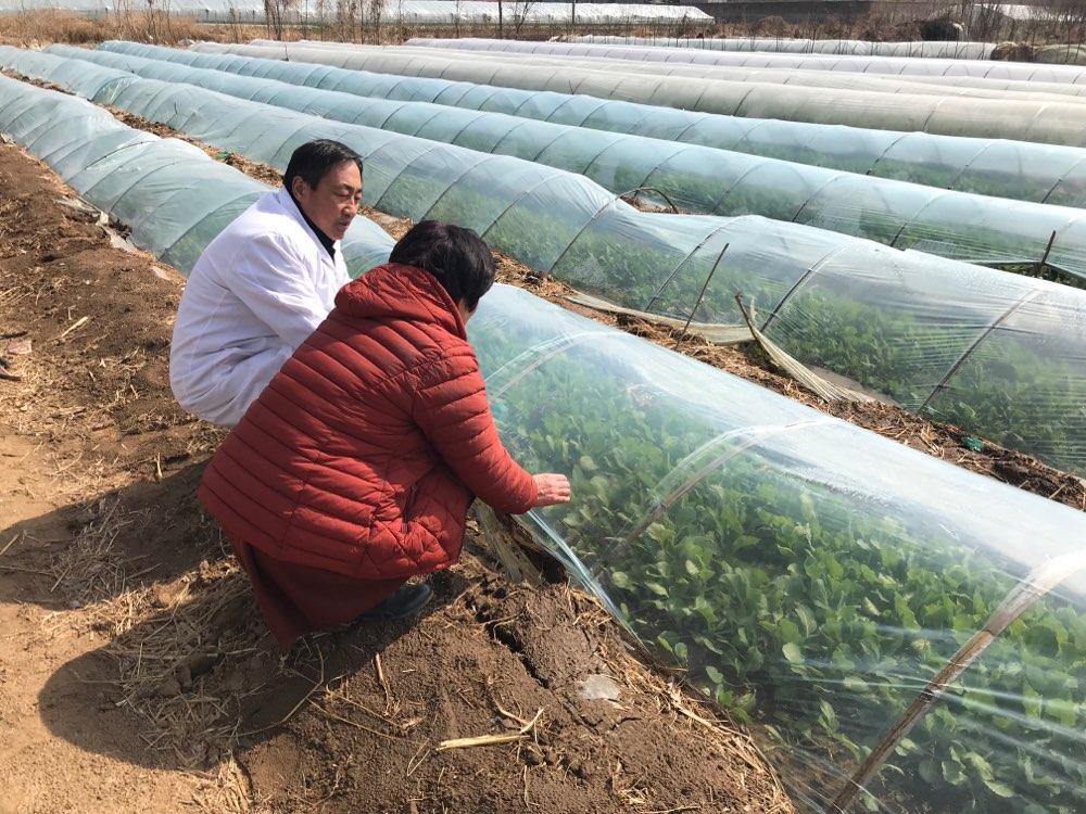 山东2017年发布202项三次产业地方标准 助力实体经济发展