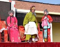 点赞!五莲县茂腔剧团《大老实发飙》上榜2017年戏曲剧本孵化计划