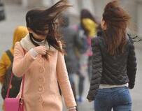海丽气象吧|济南发布大风蓝色预警 阵风7级南大风要来了