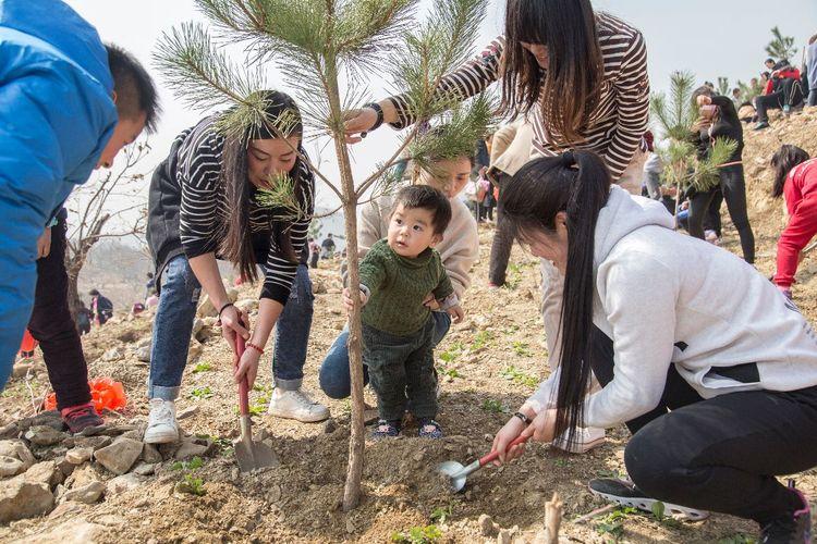 临沂:100组家庭走进压油沟风景区 参加亲子植树活动