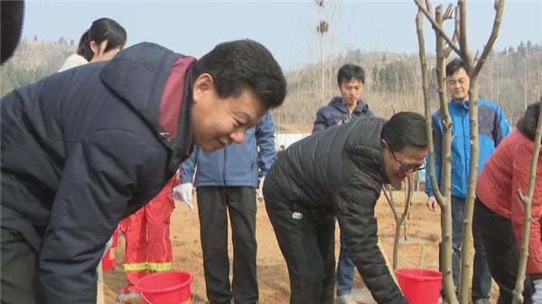 长清开展植树节活动 种下千余株树苗