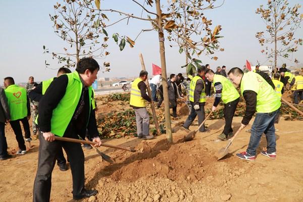 又是一年植树时!滕州东沙河130余名志愿者植树飞龙大道