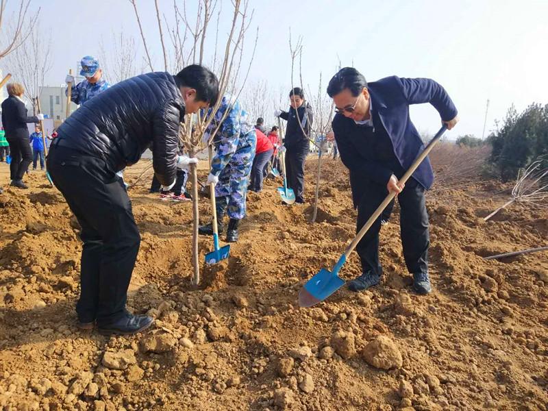 青岛李沧举行义务植树活动 1600余株绿植种上海边盐碱地
