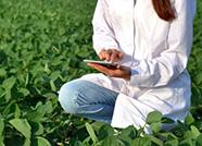 山东调整省现代农业产业技术体系创新团队岗位专家