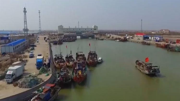 注意啦!山东4月1日至6月30日实施黄河禁渔期制度