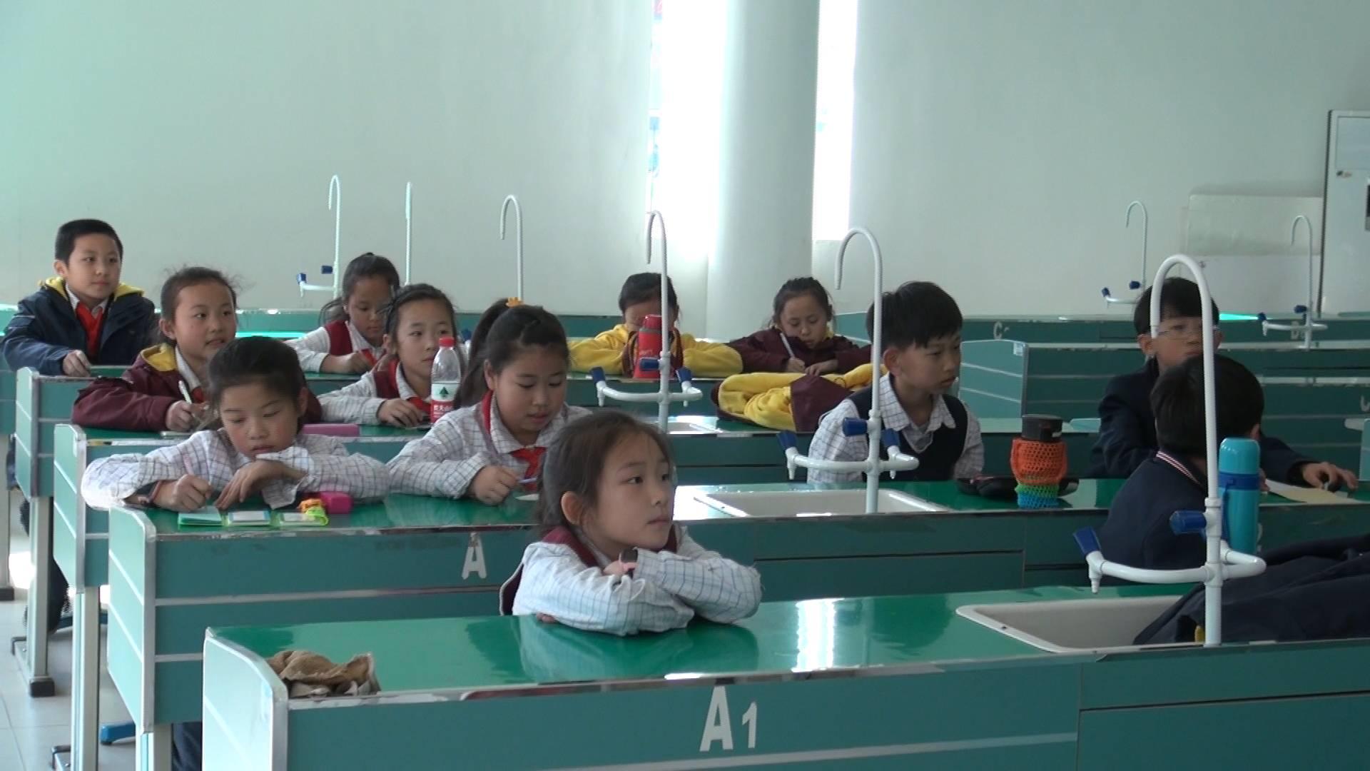 """济南这所小学率先开展""""三点半课堂"""" 音体美16种社团可选"""