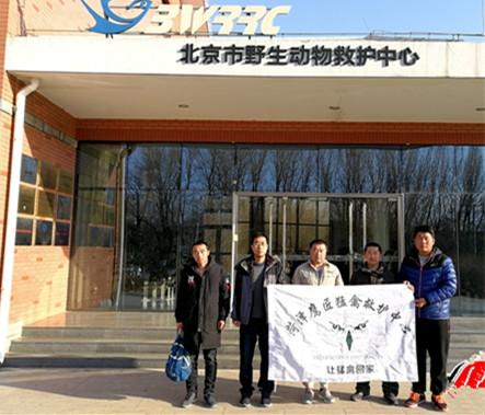 """夜奔680公里 菏泽3名志愿者送白枕鹤""""转诊""""北京"""