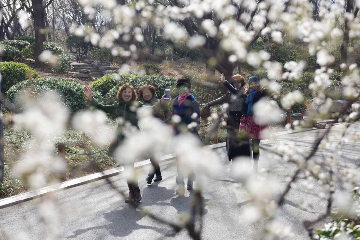 棉袄换春装 春分迎升温济南市民暖风中赏花
