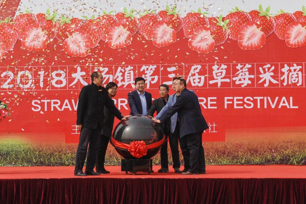 大场镇第三届草莓采摘节在青岛西海岸启动