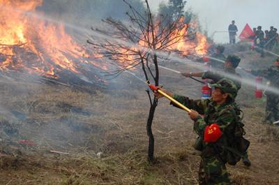 枣庄山亭开展较大森林火灾扑救应急救援实战演练
