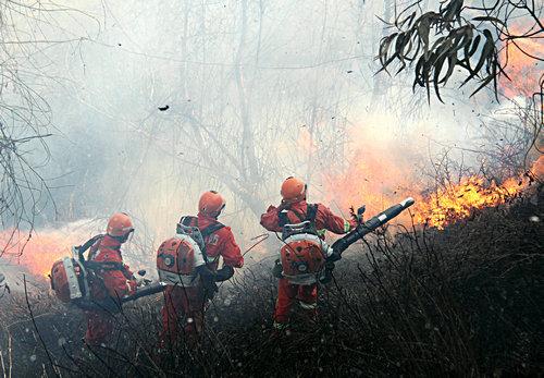 清明将至淄博成立3个森林防火督查组督查森林防火工作