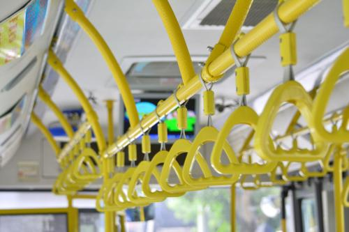 坐着公交赏花去~菏泽多条公交线路今起调整!