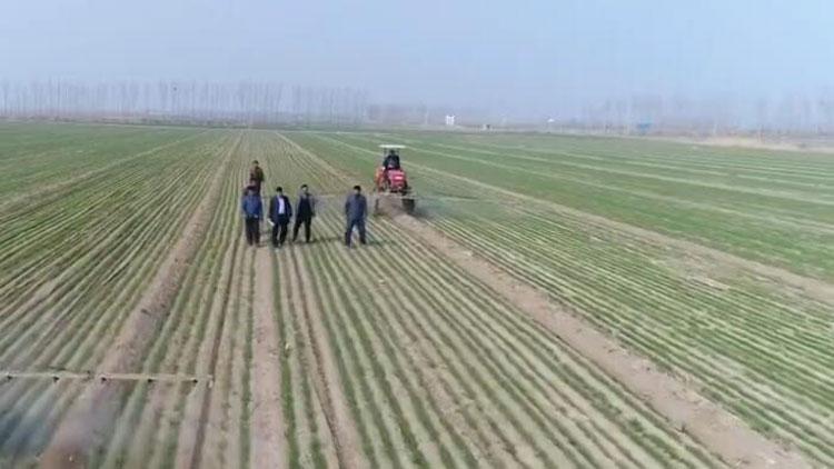 【推动乡村振兴 打造齐鲁样板】农业产业好前景需要科技支撑