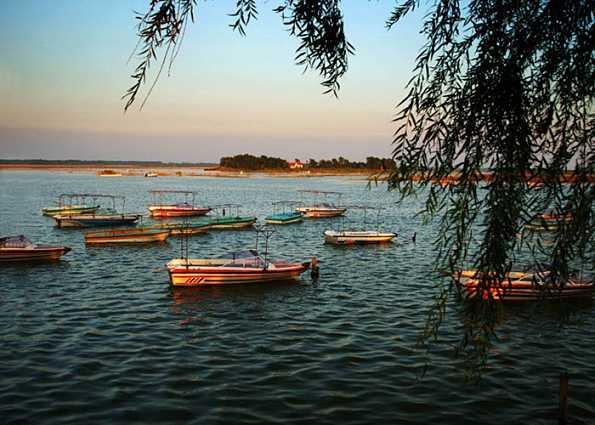 山东用河长制让河长清:水流到哪里,责任就跟到哪里