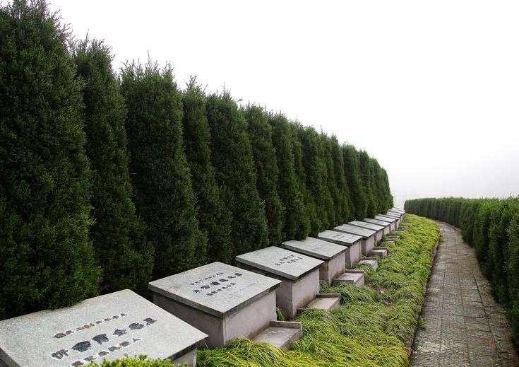 淄博:村里建起生态公墓 文明低碳深受欢迎