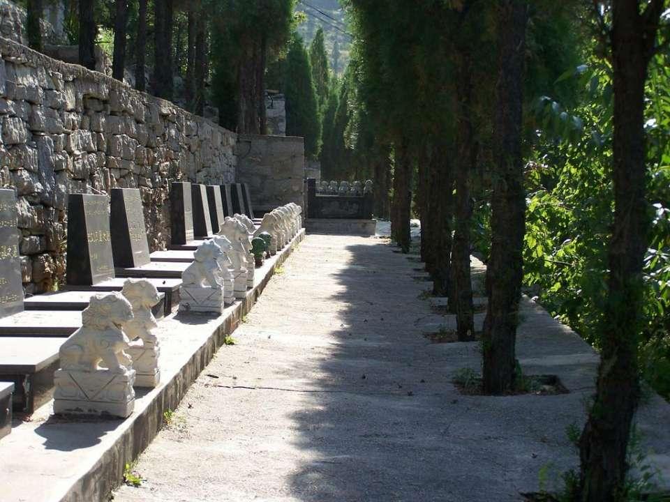 60秒|济南公益性墓地遭公开售卖 家族墓最高200万