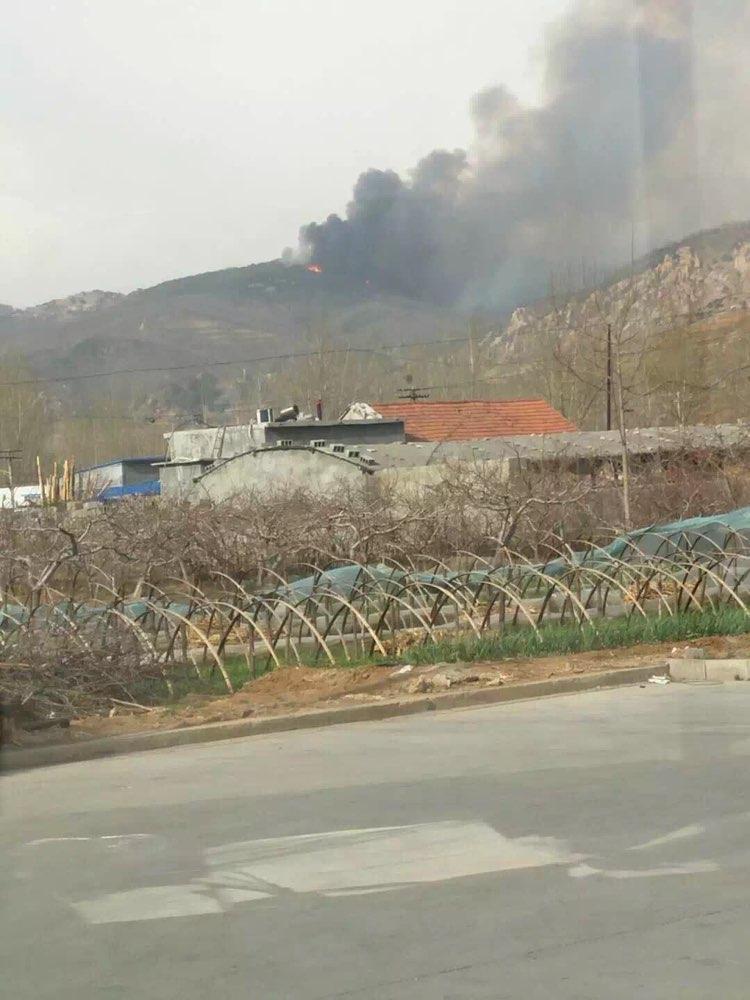 淄博沂源一山体突发森林火灾 火已扑灭无人员伤亡