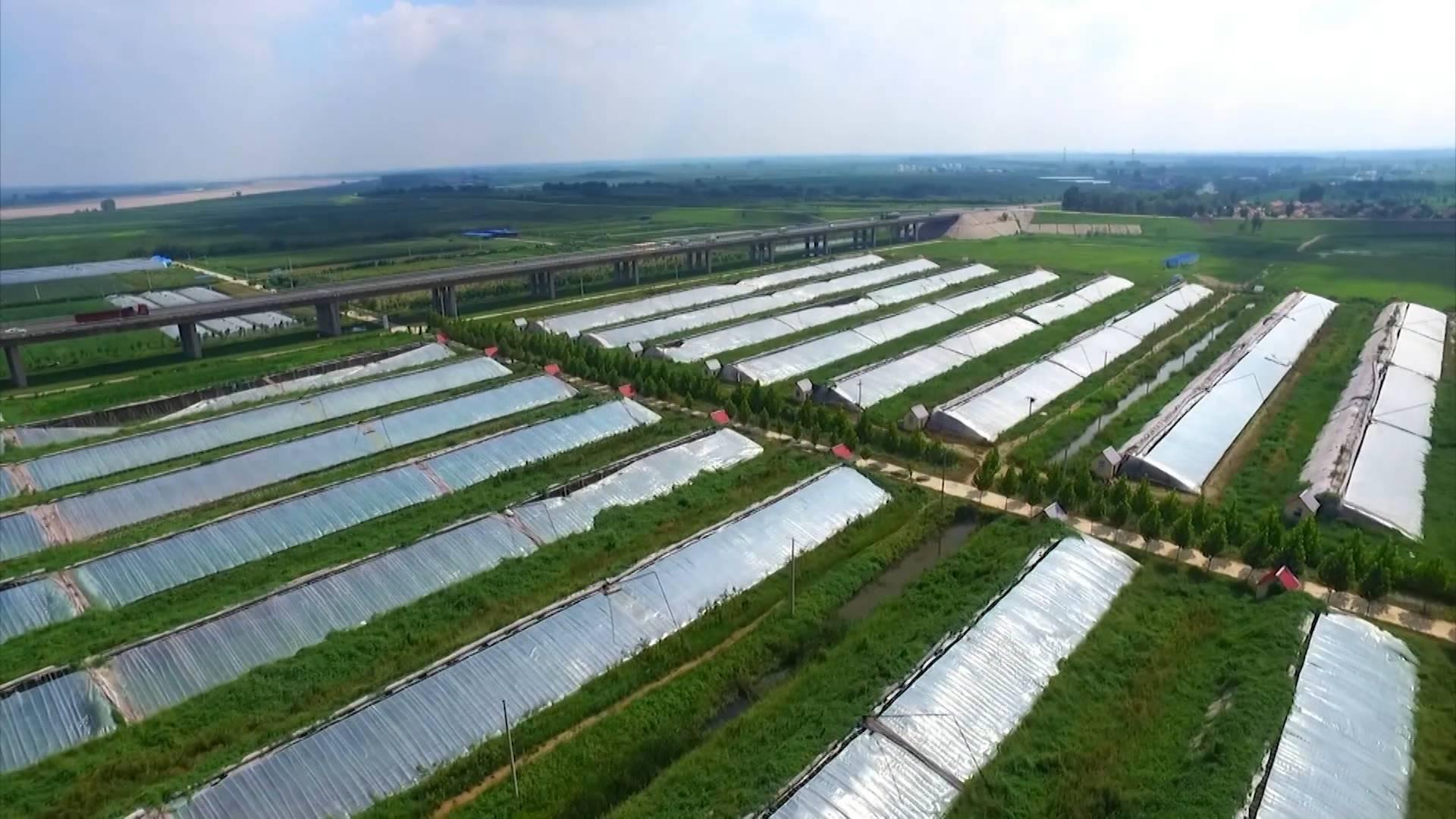 """推动乡村振兴打造齐鲁样板丨山东这5项农业生产""""黑科技""""你绝对没见过"""