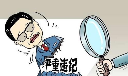 东昌府区支援重点项目建设办公室4名干部被处分