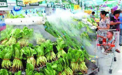 济宁市一季度出口保鲜蔬菜2.19亿美元 居全省第二