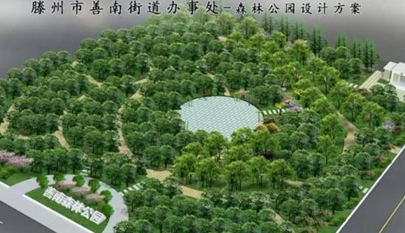 """打造市南区""""绿色宝石""""滕州善南森林公园开建"""