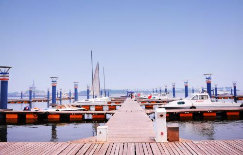 日照世帆赛基地内禁止渔业船舶停泊