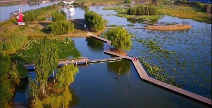 研学行实践基地落户台儿庄双龙湖湿地