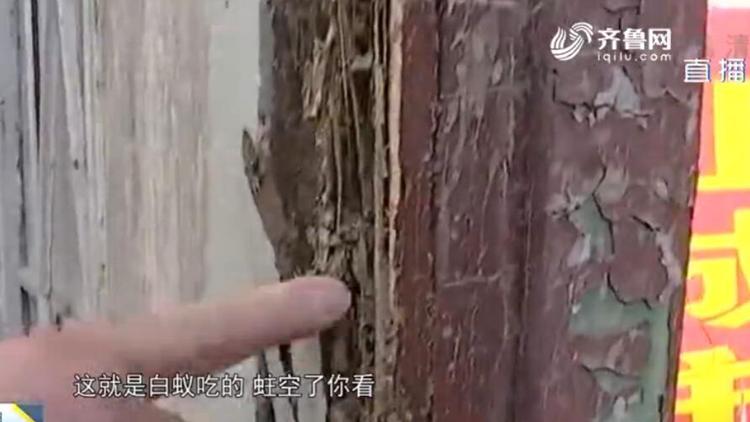 """49秒丨痛心!烟台200年历史的重点保护文物遭白蚁""""啃空"""""""