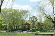 威海市区计划建23处小游园 全面提升花化景观