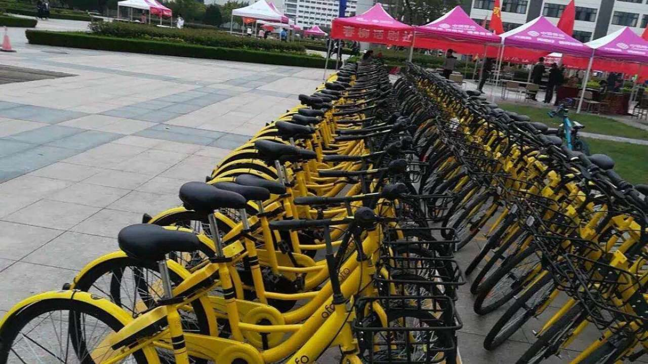 山东首家共享单车区域运营代理落户日照 首批2500辆投放大学城