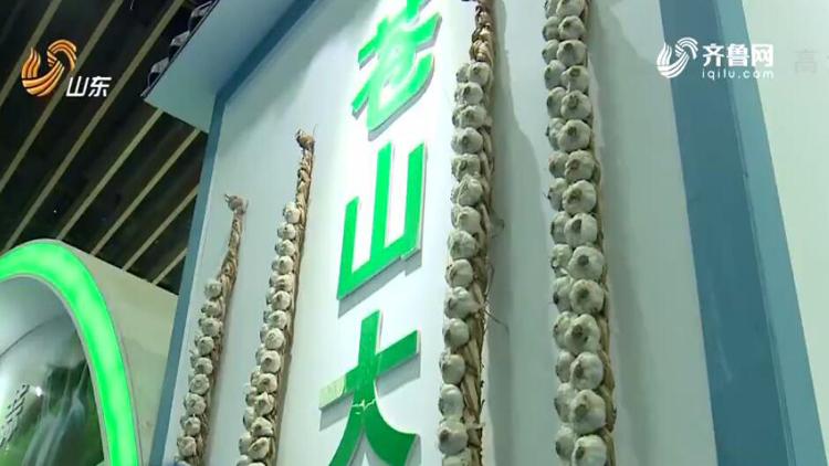 兰陵菜博会开幕 55家客商参展