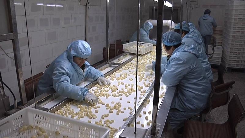 71秒|为把地头大蒜卖出去,他实验500多次,研究出大蒜面