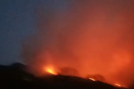 突发!泰安与济南交界处山林起火 目前仍未扑灭