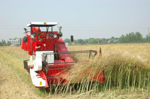 山东农机系统促乡村振兴 今年重点抓好八个方面