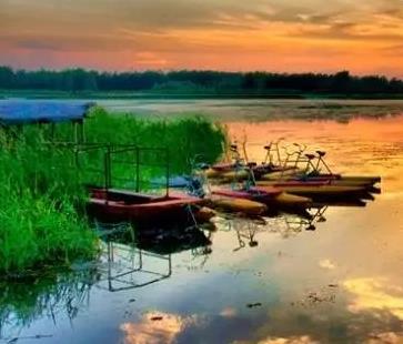 单县浮龙湖:任何人到了这里,都会变成诗人