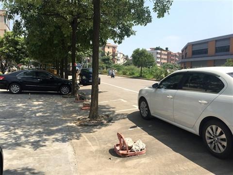 缓解停车难 临沂新增10万个路边公共停车位