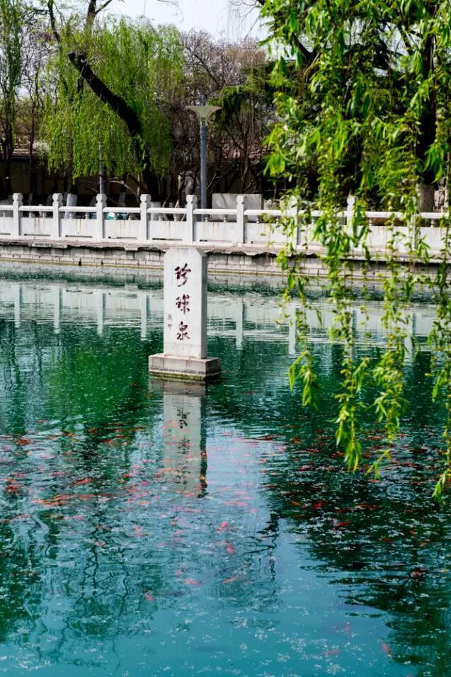 珍珠泉.jpg