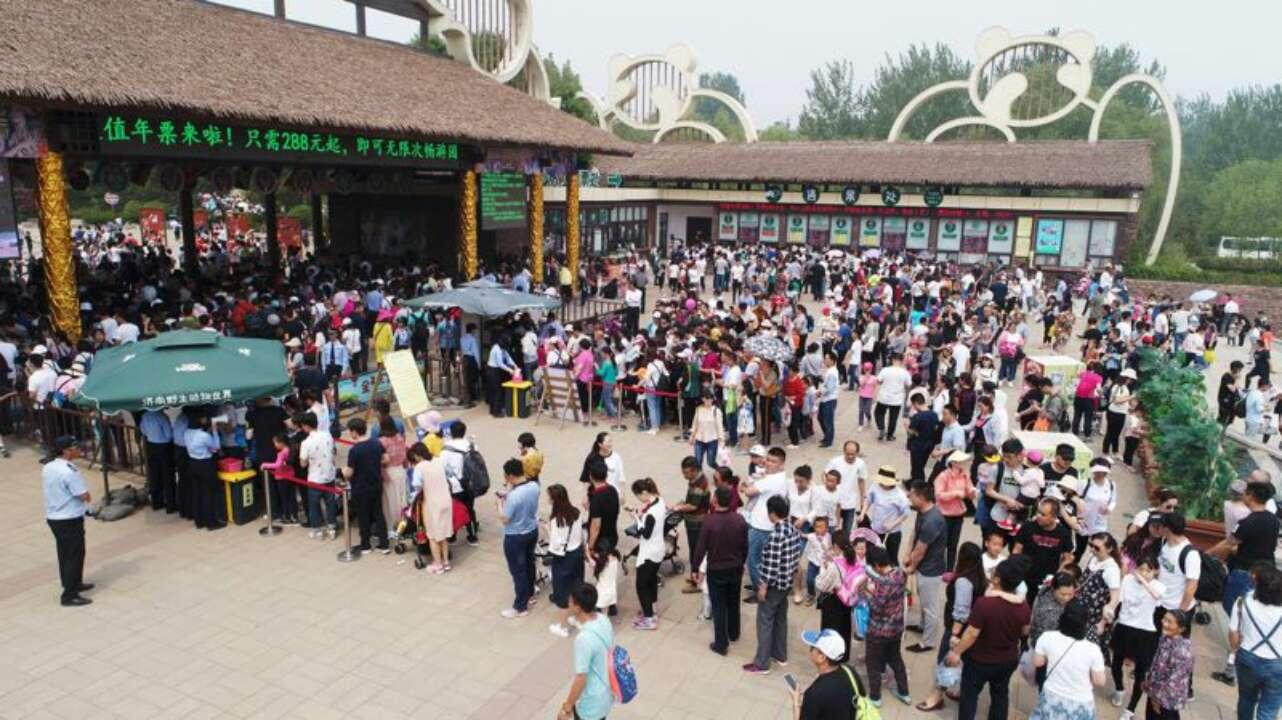 假期第二天济南野生动物园火爆,售票排长龙,马戏更欢乐