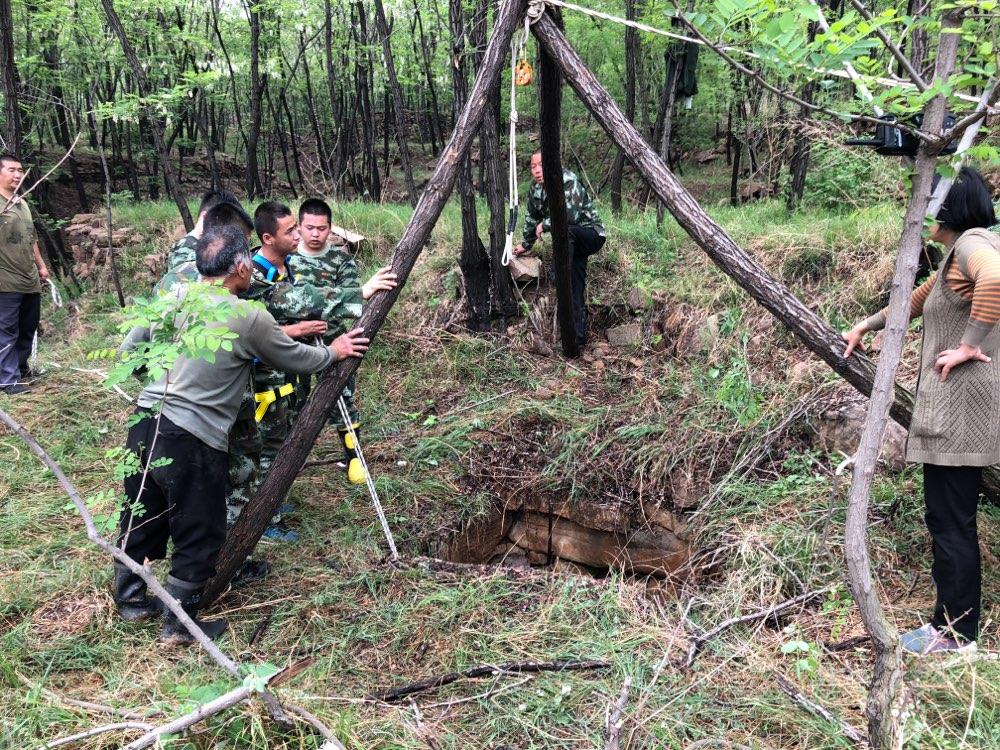 淄博:村民一头黄牛掉入深井 消防紧急救援