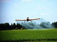 山东制定现代高效农业专项规划 推进农业新旧动能转换