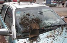 淄博:找不到工作干着急 男子砸出租车被拘留