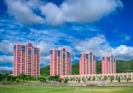 山东三所省属高校招聘209人 具体职位表公布