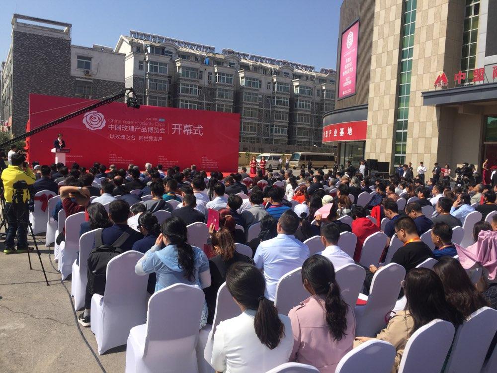 2018中国(平阴)玫瑰节今天开幕
