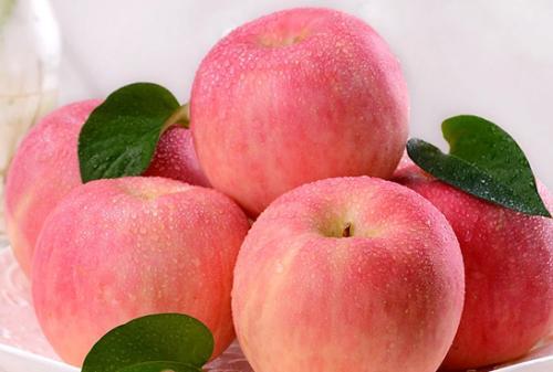 山东:苹果生产将实现良种化、标准化、绿色化