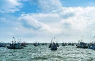 全国沿海渔港建设规划发布 威海建3处渔港经济区